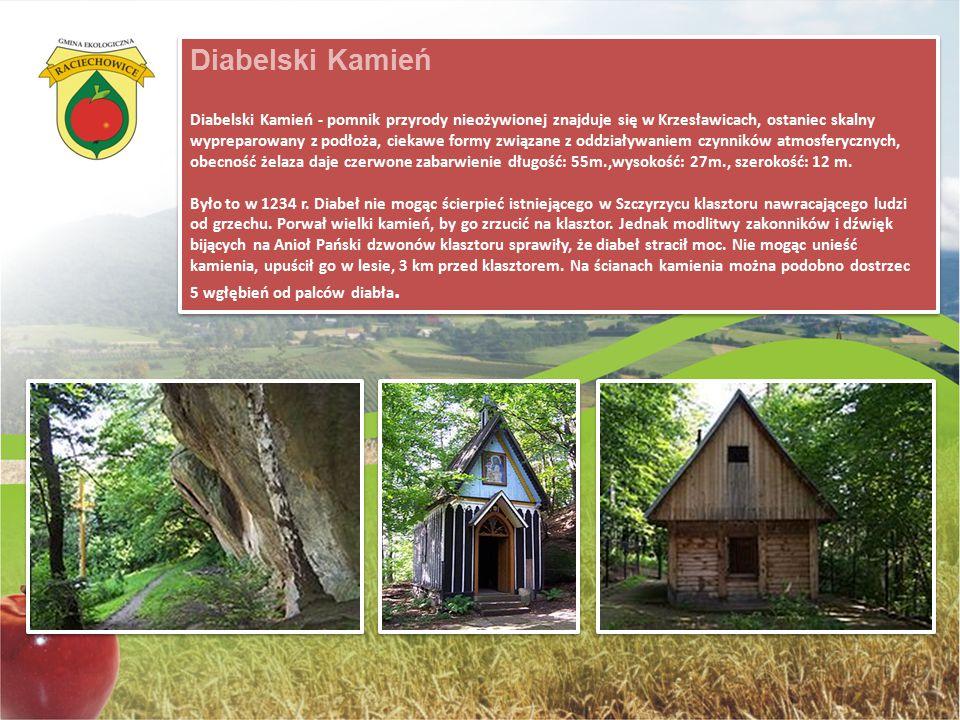Diabelski Kamień Diabelski Kamień - pomnik przyrody nieożywionej znajduje się w Krzesławicach, ostaniec skalny wypreparowany z podłoża, ciekawe formy związane z oddziaływaniem czynników atmosferycznych, obecność żelaza daje czerwone zabarwienie długość: 55m.,wysokość: 27m., szerokość: 12 m.