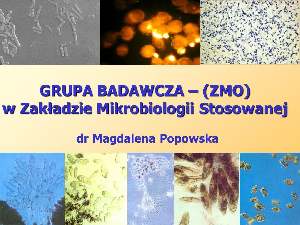 GRUPA BADAWCZA – (ZMO) w Zakładzie Mikrobiologii Stosowanej