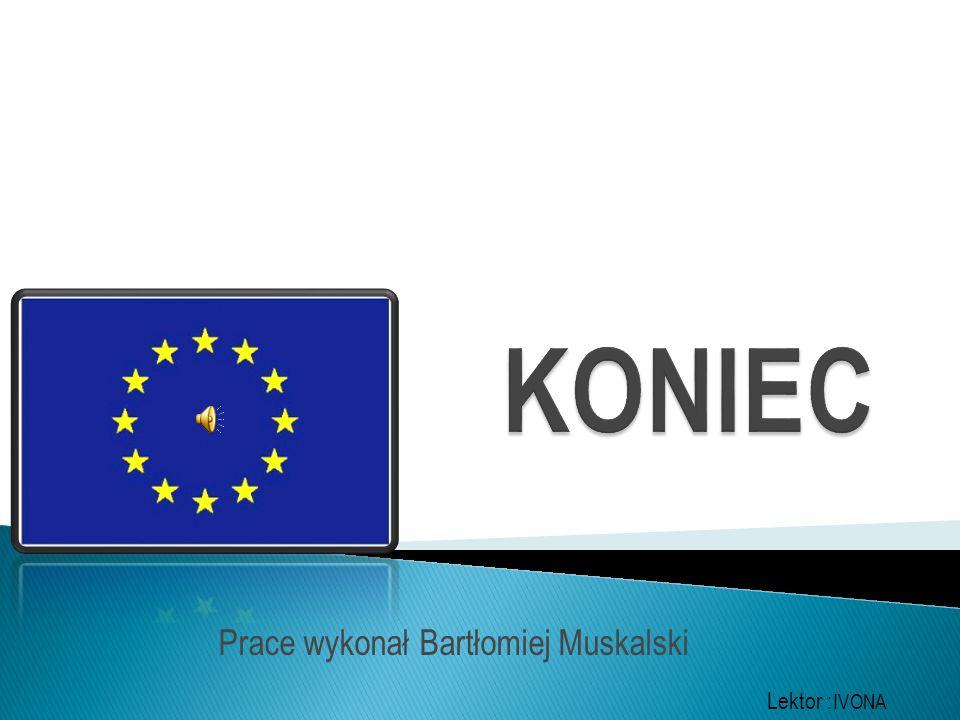 Prace wykonał Bartłomiej Muskalski