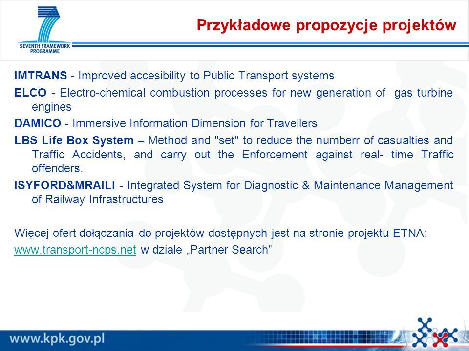 Przykładowe propozycje projektów