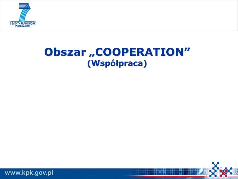 "Obszar ""COOPERATION (Współpraca)"