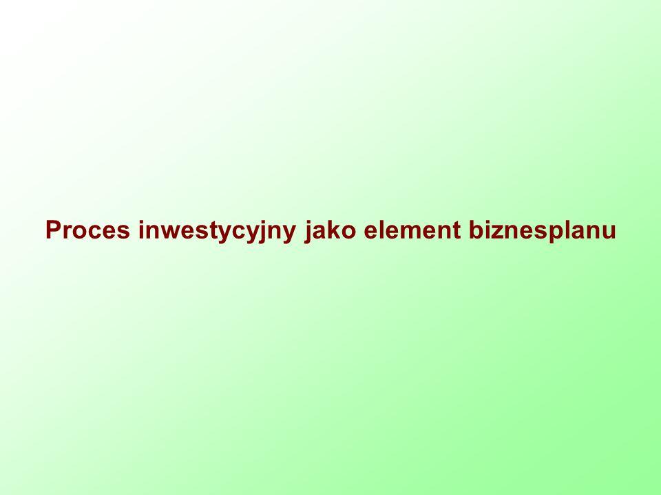 Proces inwestycyjny jako element biznesplanu