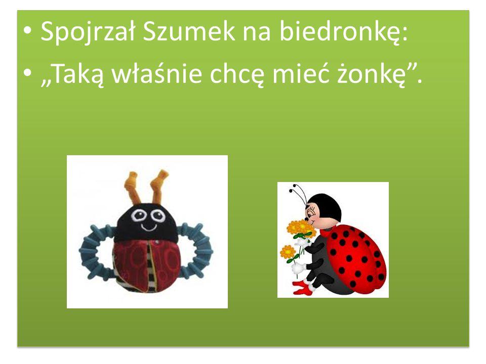 Spojrzał Szumek na biedronkę: