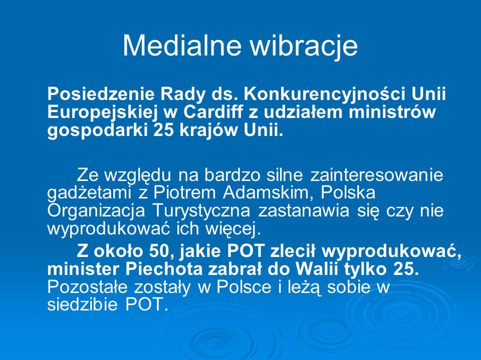 Medialne wibracje Posiedzenie Rady ds. Konkurencyjności Unii Europejskiej w Cardiff z udziałem ministrów gospodarki 25 krajów Unii.