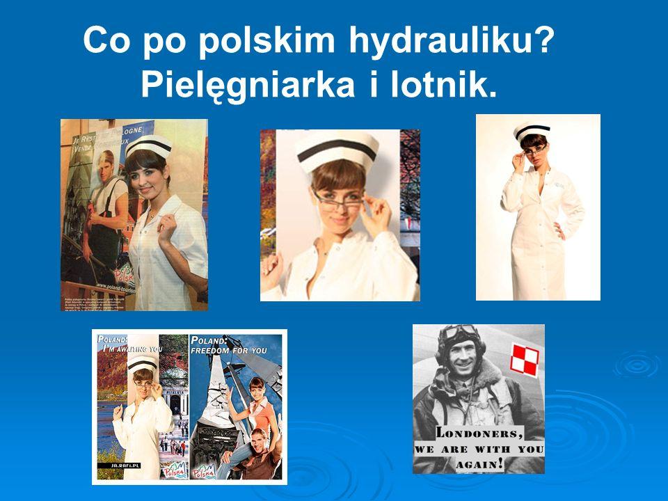 Co po polskim hydrauliku Pielęgniarka i lotnik.