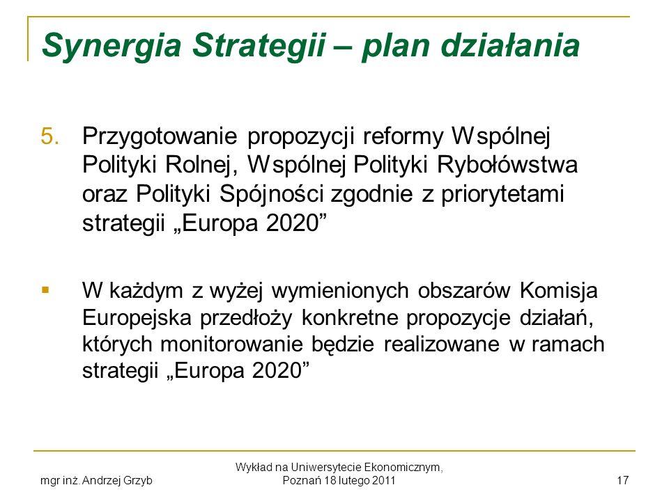 Synergia Strategii – plan działania