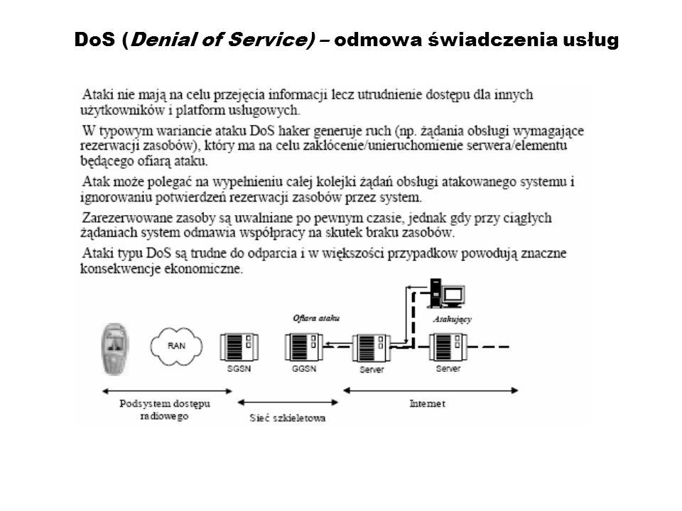DoS (Denial of Service) – odmowa świadczenia usług