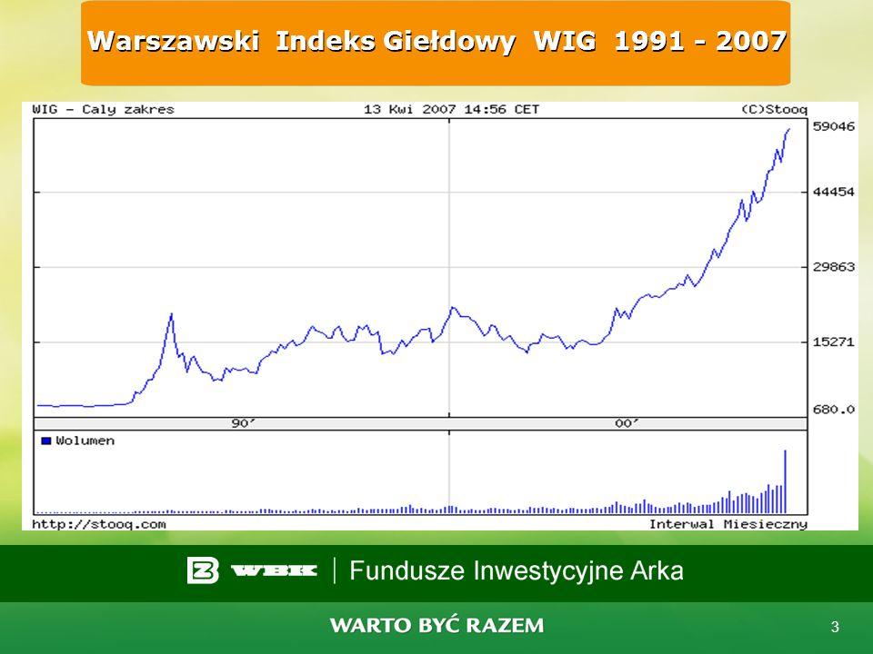 Warszawski Indeks Giełdowy WIG 1991 - 2007