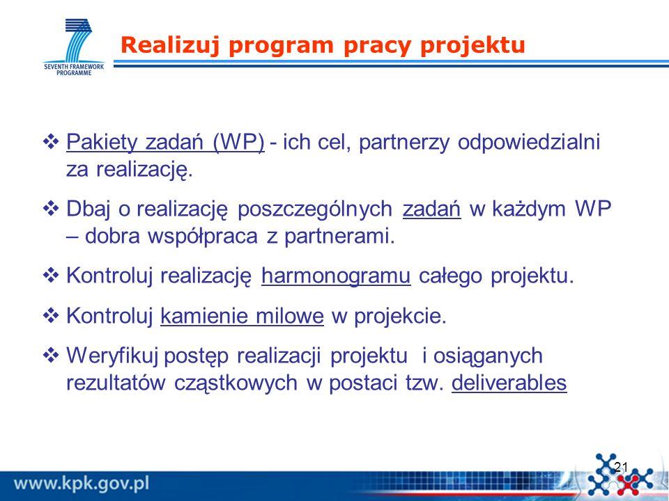 Realizuj program pracy projektu