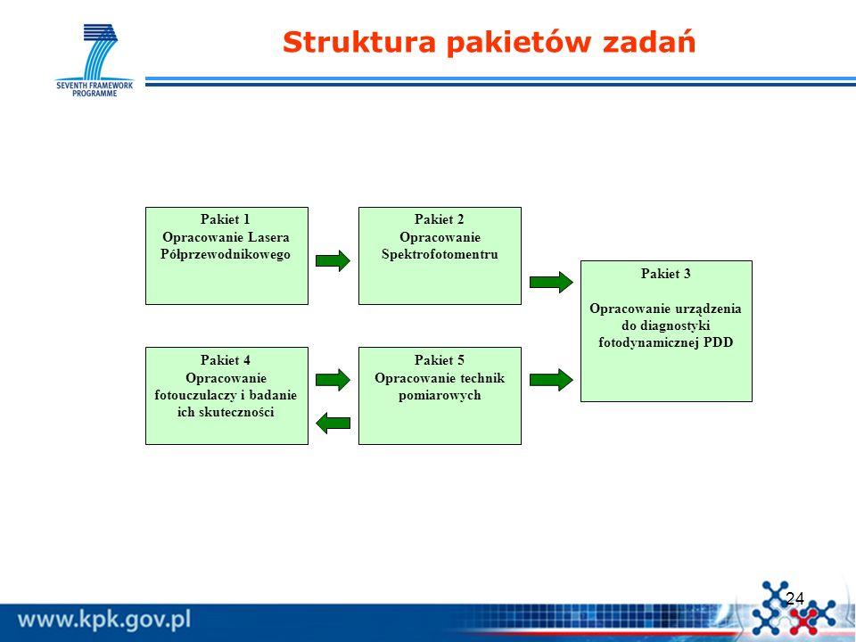 Struktura pakietów zadań