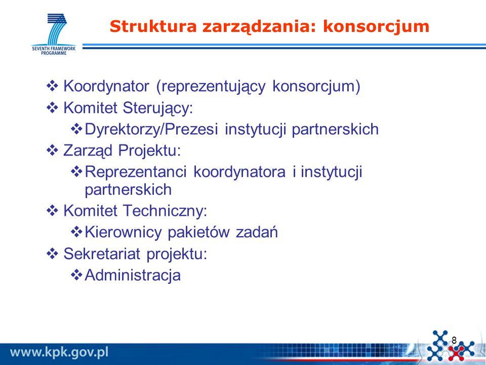 Struktura zarządzania: konsorcjum