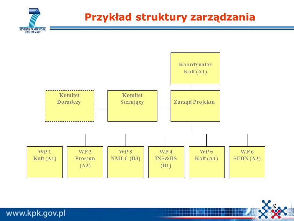 Przykład struktury zarządzania