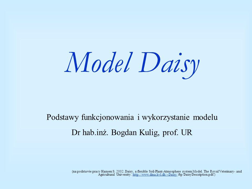 Model Daisy Podstawy funkcjonowania i wykorzystanie modelu