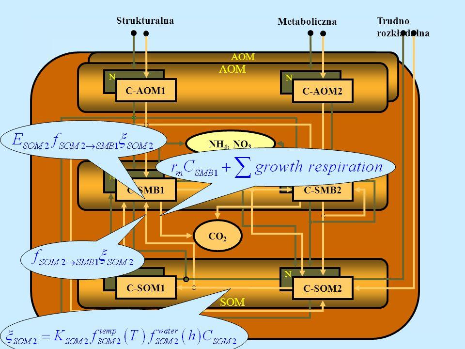 AOM SMB SOM Strukturalna Metaboliczna Trudno rozkładalna AOM C-AOM1