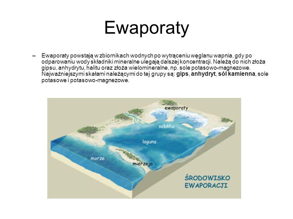 Ewaporaty
