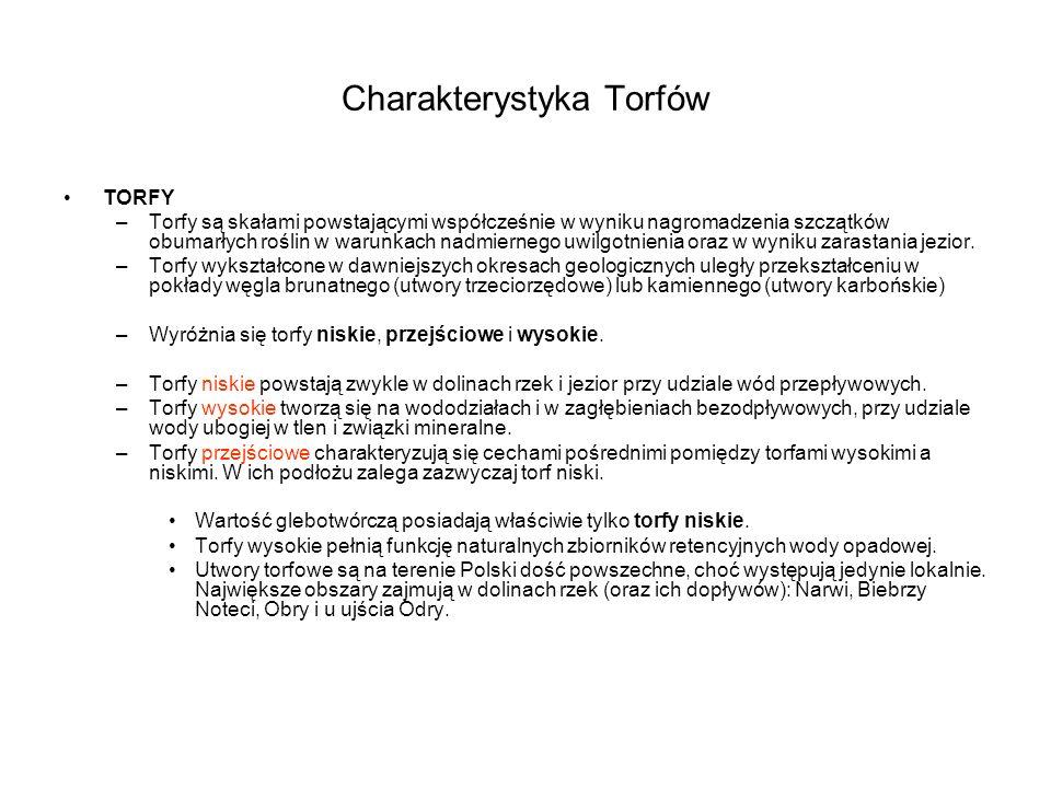 Charakterystyka Torfów