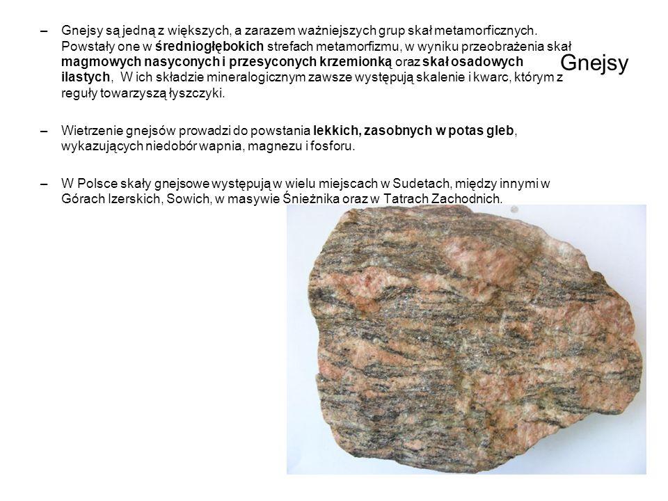 Gnejsy są jedną z większych, a zarazem ważniejszych grup skał metamorficznych. Powstały one w średniogłębokich strefach metamorfizmu, w wyniku przeobrażenia skał magmowych nasyconych i przesyconych krzemionką oraz skał osadowych ilastych, W ich składzie mineralogicznym zawsze występują skalenie i kwarc, którym z reguły towarzyszą łyszczyki.
