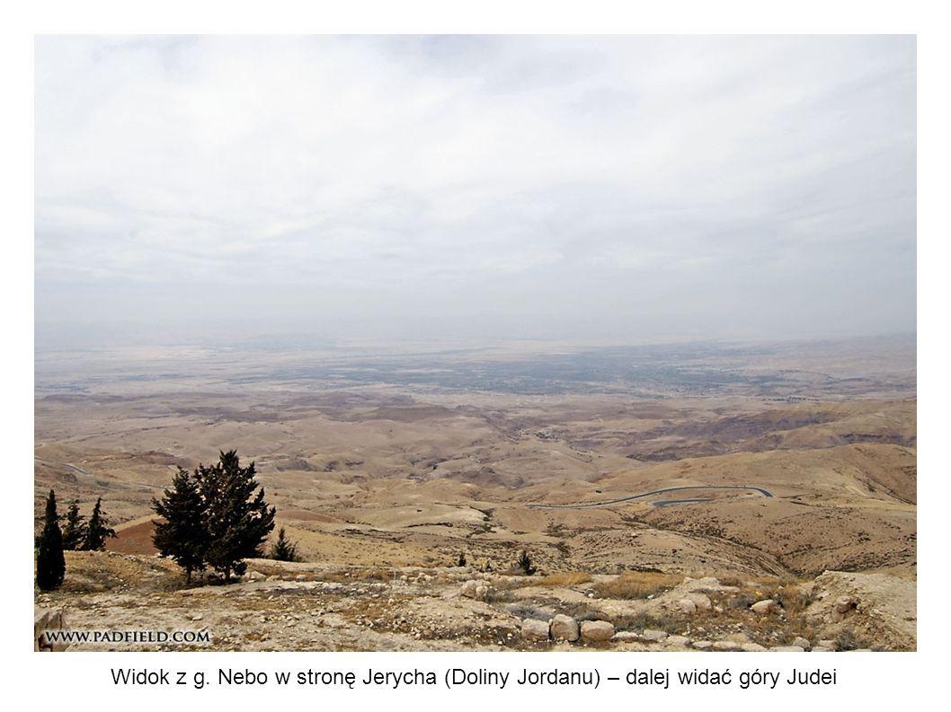 Widok z g. Nebo w stronę Jerycha (Doliny Jordanu) – dalej widać góry Judei