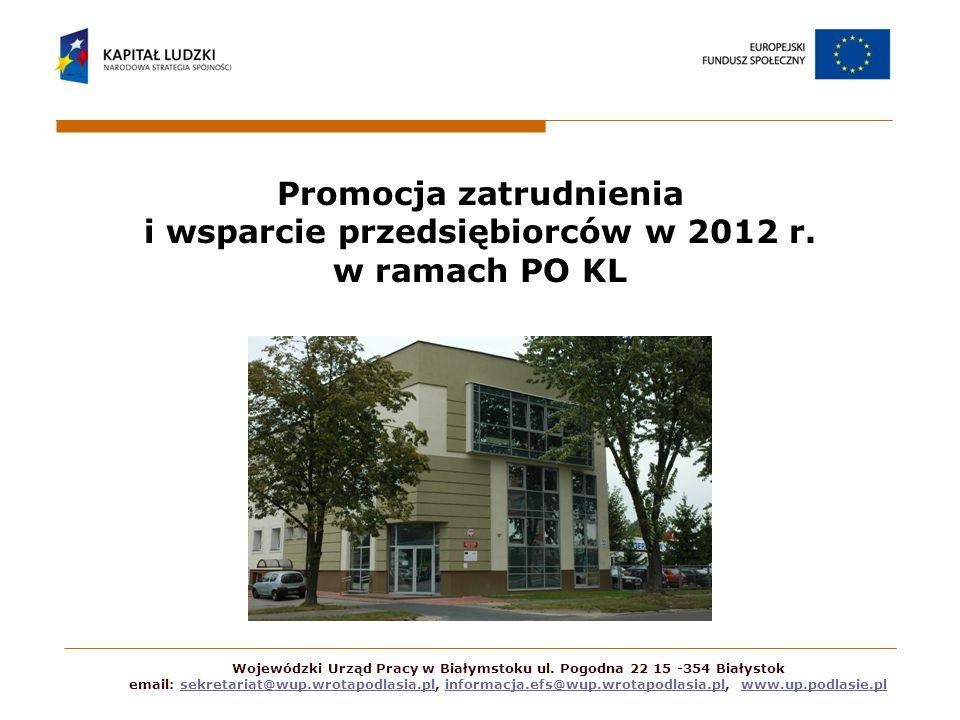Promocja zatrudnienia i wsparcie przedsiębiorców w 2012 r
