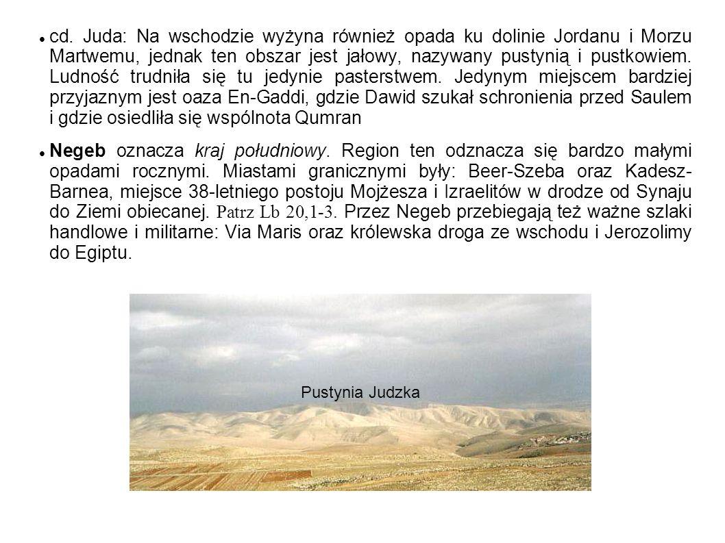 cd. Juda: Na wschodzie wyżyna również opada ku dolinie Jordanu i Morzu Martwemu, jednak ten obszar jest jałowy, nazywany pustynią i pustkowiem. Ludność trudniła się tu jedynie pasterstwem. Jedynym miejscem bardziej przyjaznym jest oaza En-Gaddi, gdzie Dawid szukał schronienia przed Saulem i gdzie osiedliła się wspólnota Qumran