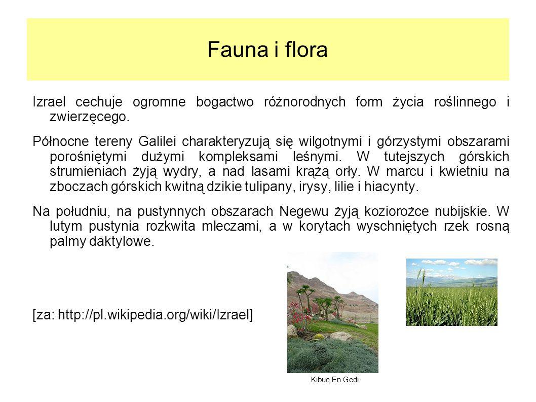 Fauna i flora Izrael cechuje ogromne bogactwo różnorodnych form życia roślinnego i zwierzęcego.