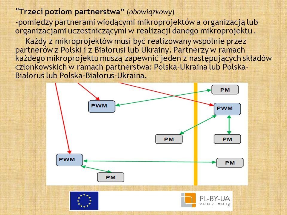 Trzeci poziom partnerstwa (obowiązkowy)
