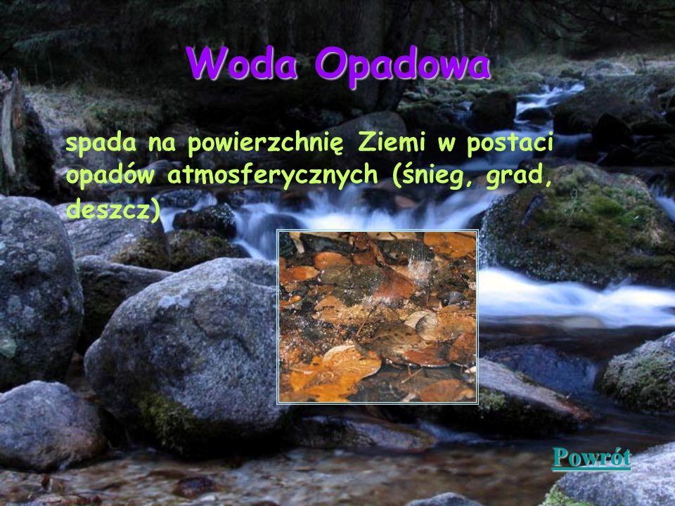 Woda Opadowa spada na powierzchnię Ziemi w postaci opadów atmosferycznych (śnieg, grad, deszcz) Powrót.