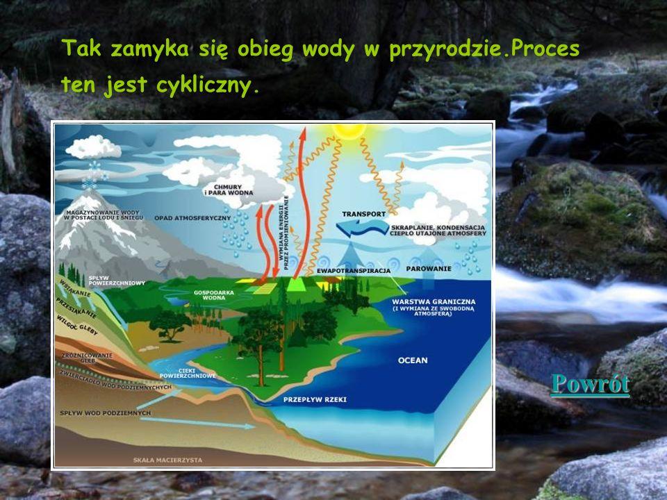 Tak zamyka się obieg wody w przyrodzie.Proces ten jest cykliczny.