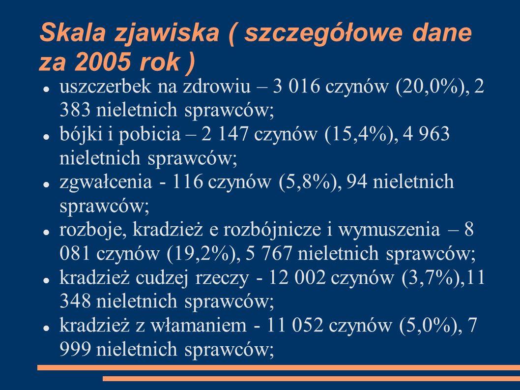 Skala zjawiska ( szczegółowe dane za 2005 rok )
