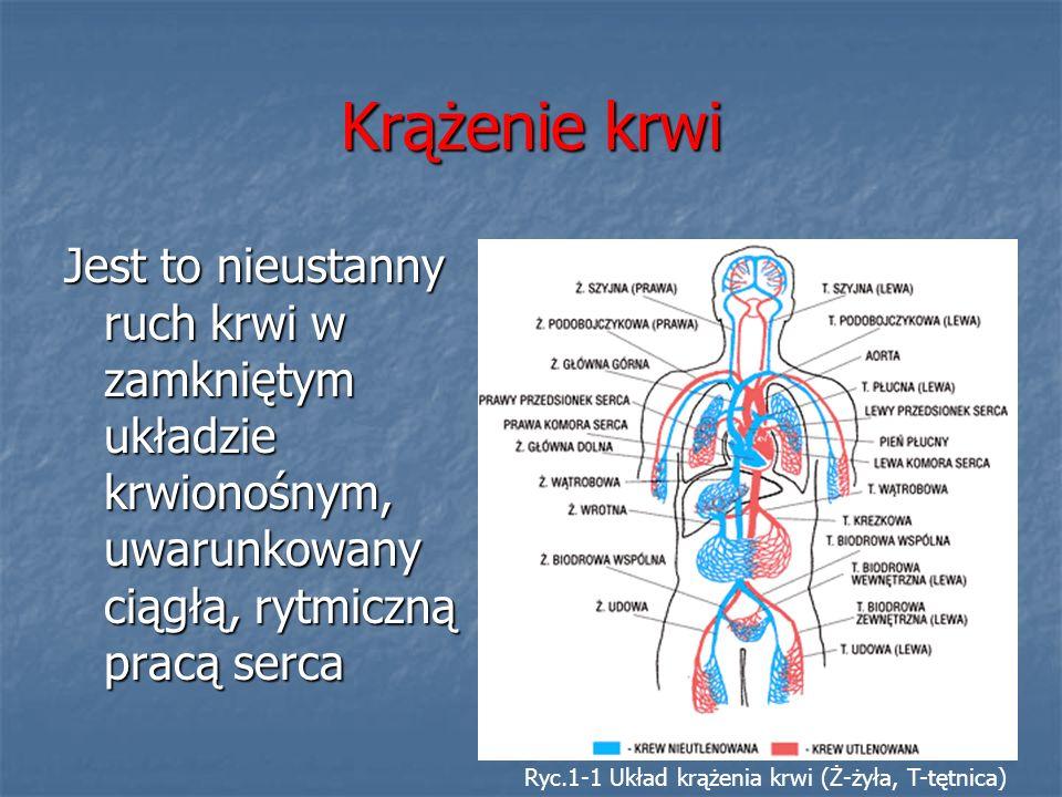 Krążenie krwi Jest to nieustanny ruch krwi w zamkniętym układzie krwionośnym, uwarunkowany ciągłą, rytmiczną pracą serca.
