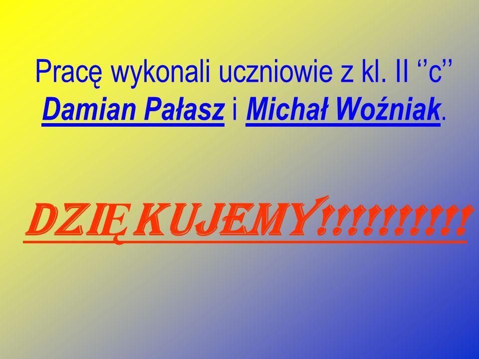 Pracę wykonali uczniowie z kl. II ''c'' Damian Pałasz i Michał Woźniak.