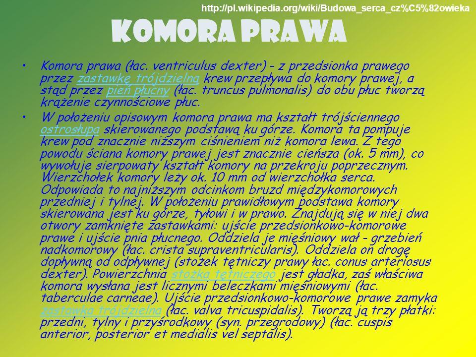 Komora Prawahttp://pl.wikipedia.org/wiki/Budowa_serca_cz%C5%82owieka.