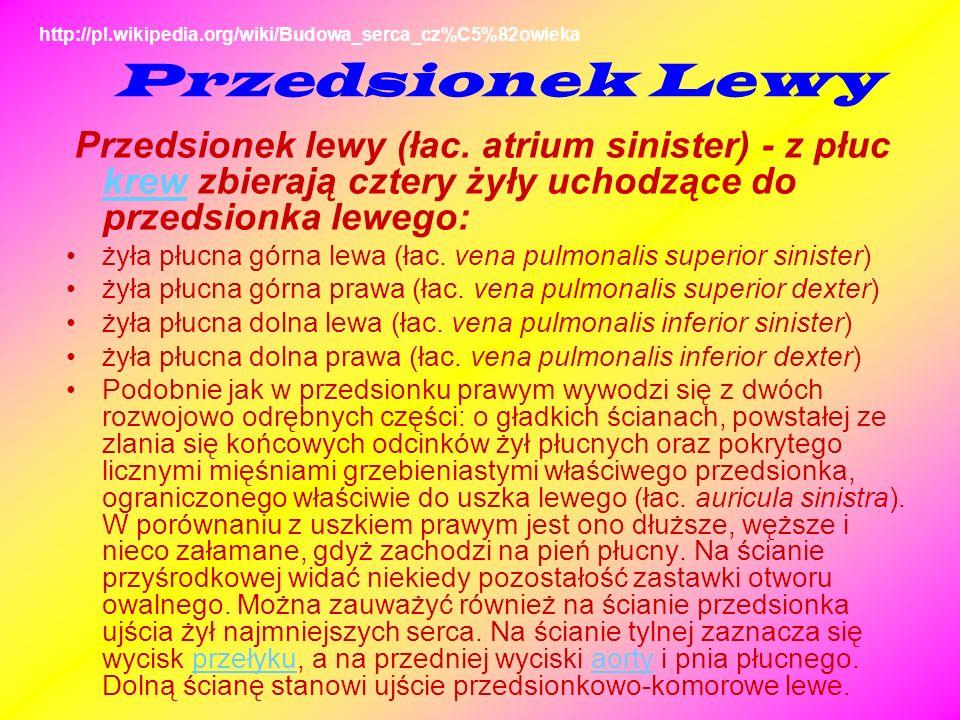 http://pl.wikipedia.org/wiki/Budowa_serca_cz%C5%82owieka Przedsionek Lewy.