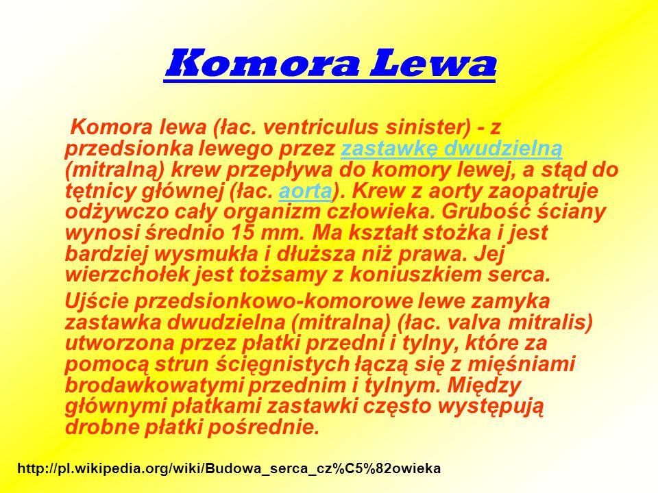 Komora Lewa