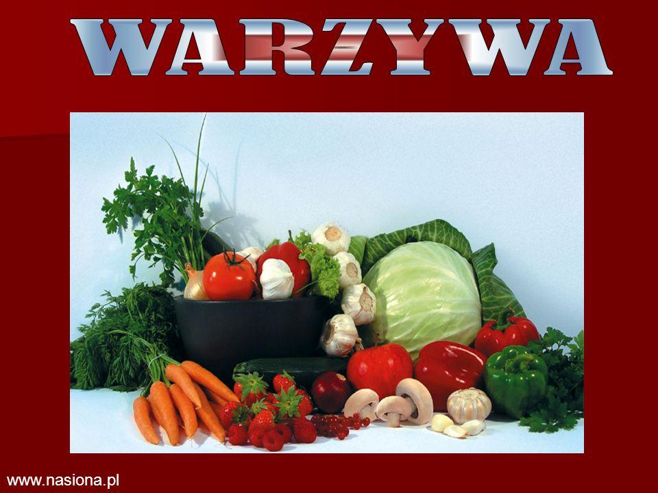 WARZYWA www.nasiona.pl
