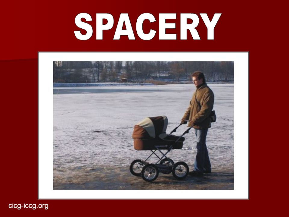 SPACERY cicg-iccg.org
