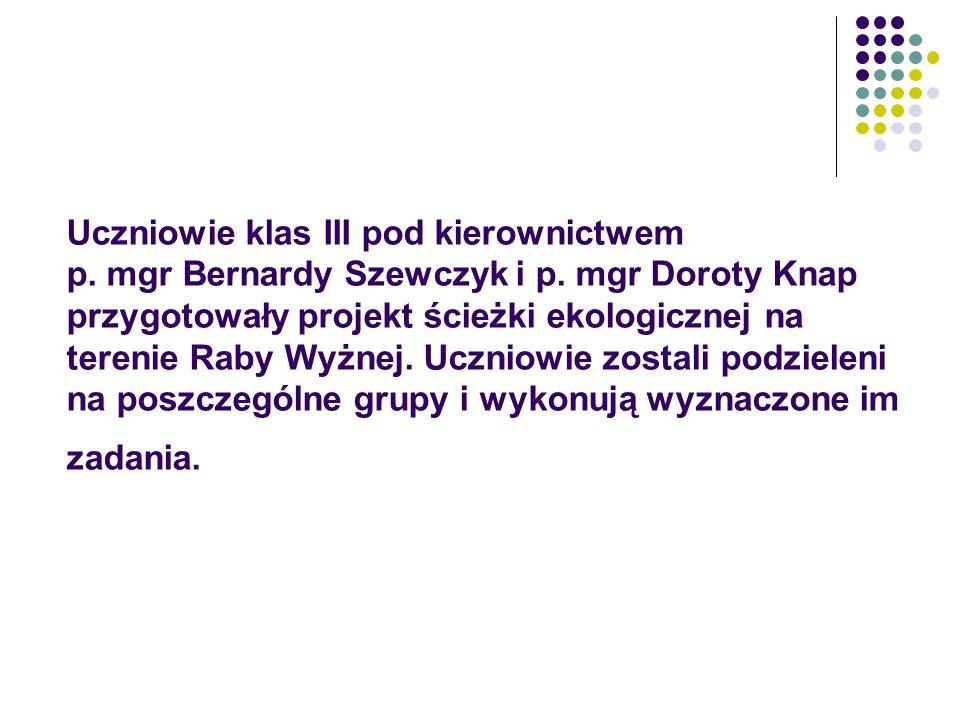 Uczniowie klas III pod kierownictwem p. mgr Bernardy Szewczyk i p