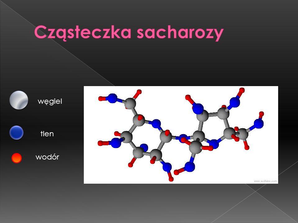 Cząsteczka sacharozy węgiel tlen wodór