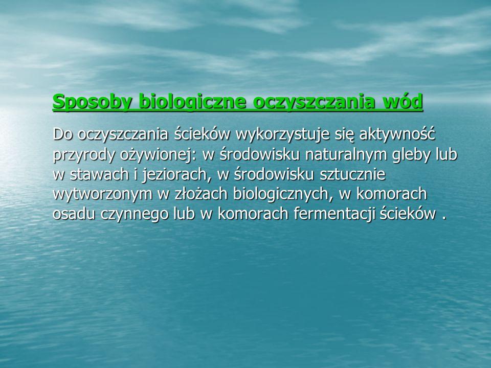 Sposoby biologiczne oczyszczania wód
