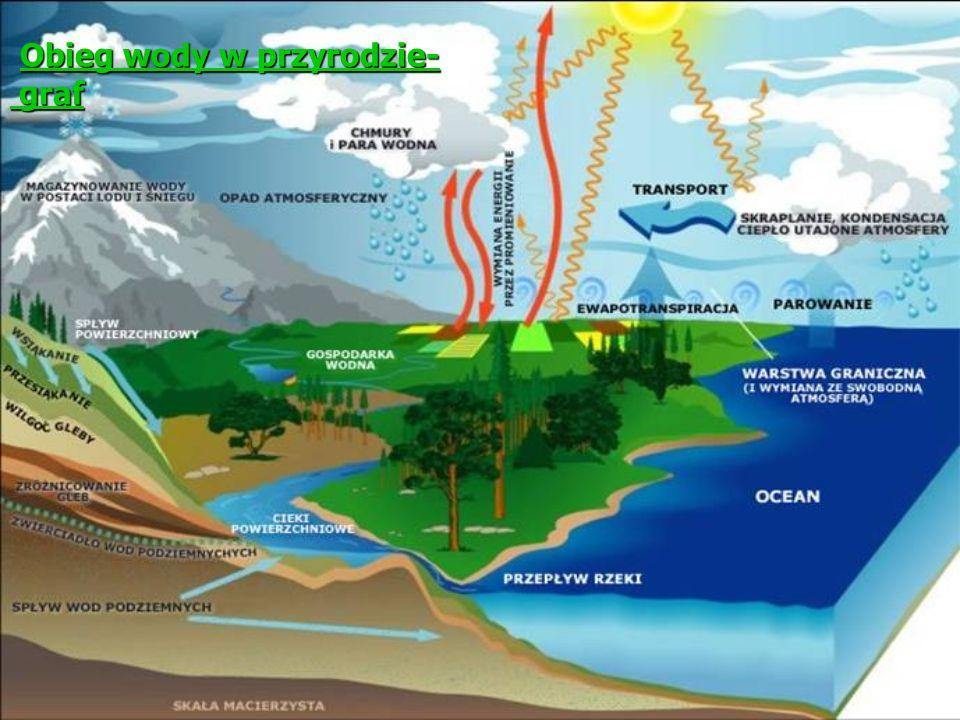 Obieg wody w przyrodzie- graf