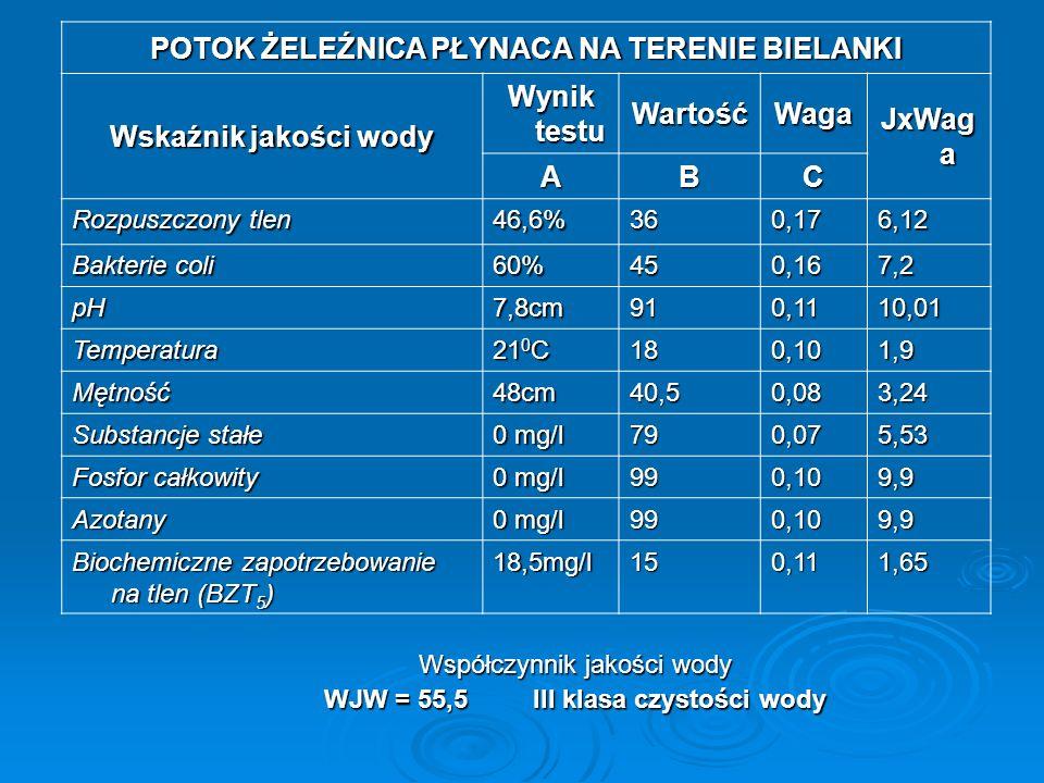 POTOK ŻELEŹNICA PŁYNACA NA TERENIE BIELANKI Wskaźnik jakości wody