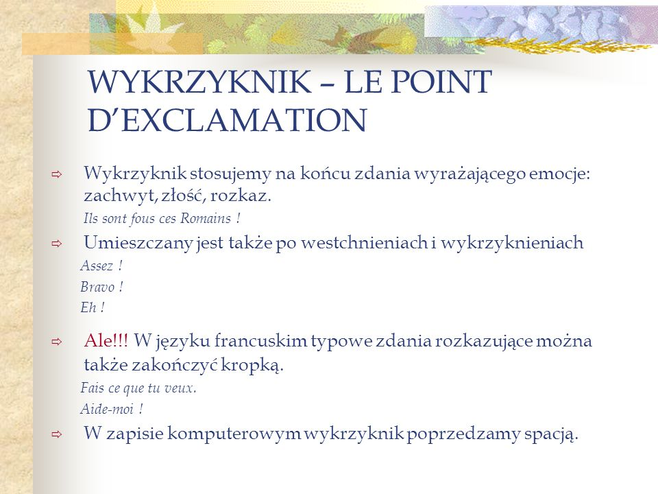 WYKRZYKNIK – LE POINT D'EXCLAMATION