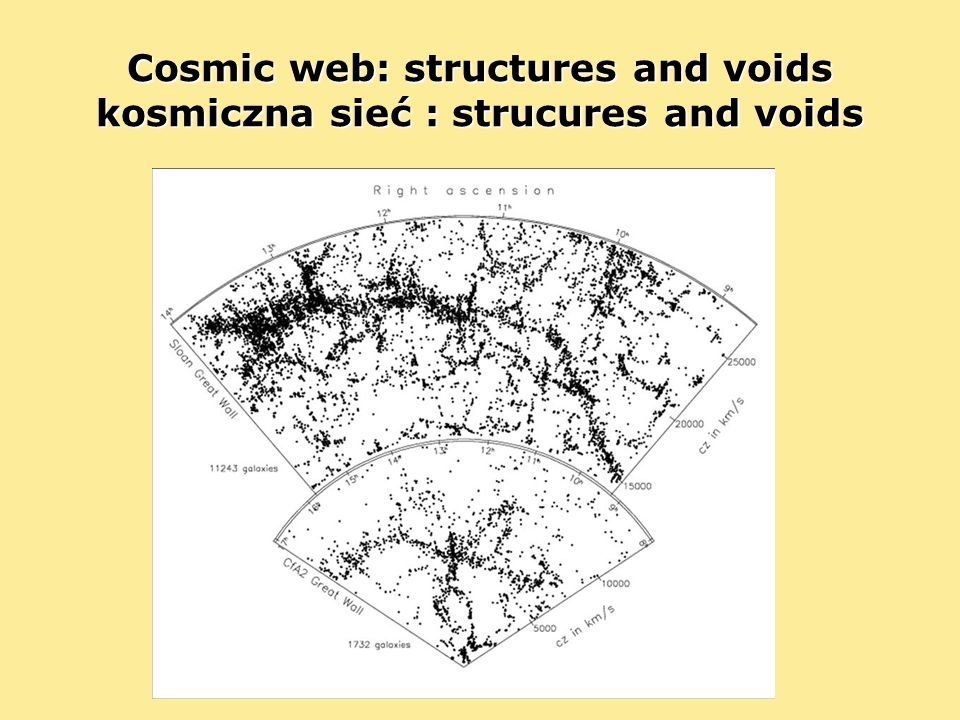 Cosmic web: structures and voids kosmiczna sieć : strucures and voids