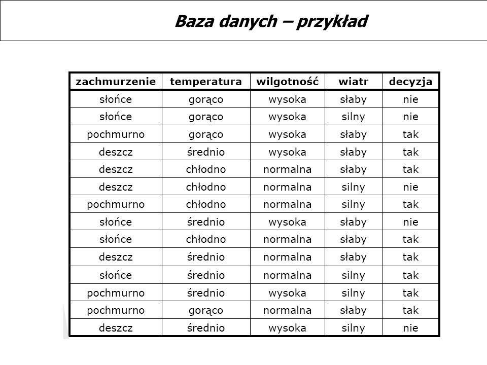 Baza danych – przykład