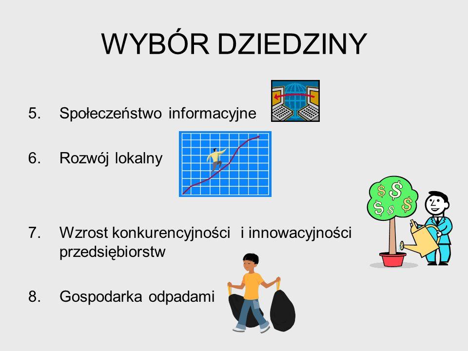 WYBÓR DZIEDZINY Społeczeństwo informacyjne Rozwój lokalny