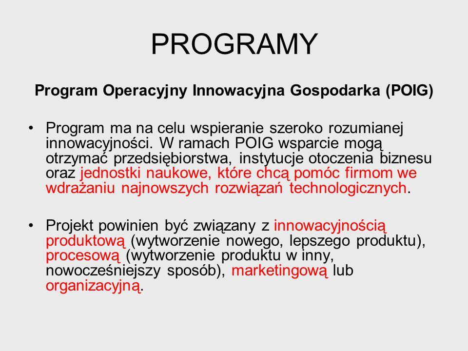 Program Operacyjny Innowacyjna Gospodarka (POIG)