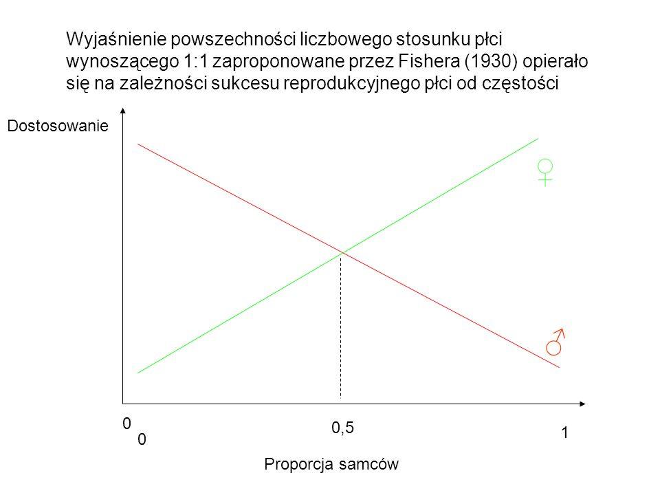Wyjaśnienie powszechności liczbowego stosunku płci wynoszącego 1:1 zaproponowane przez Fishera (1930) opierało się na zależności sukcesu reprodukcyjnego płci od częstości