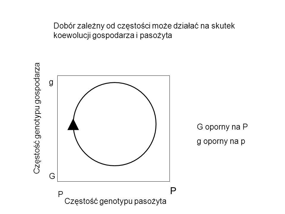 Dobór zależny od częstości może działać na skutek koewolucji gospodarza i pasożyta