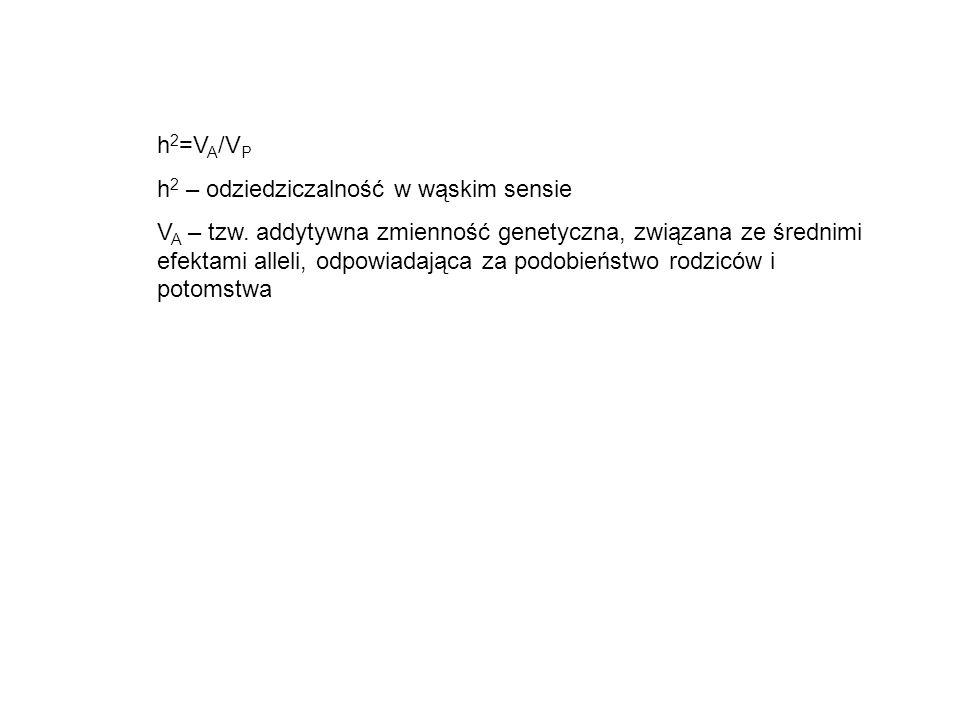 h2=VA/VP h2 – odziedziczalność w wąskim sensie.