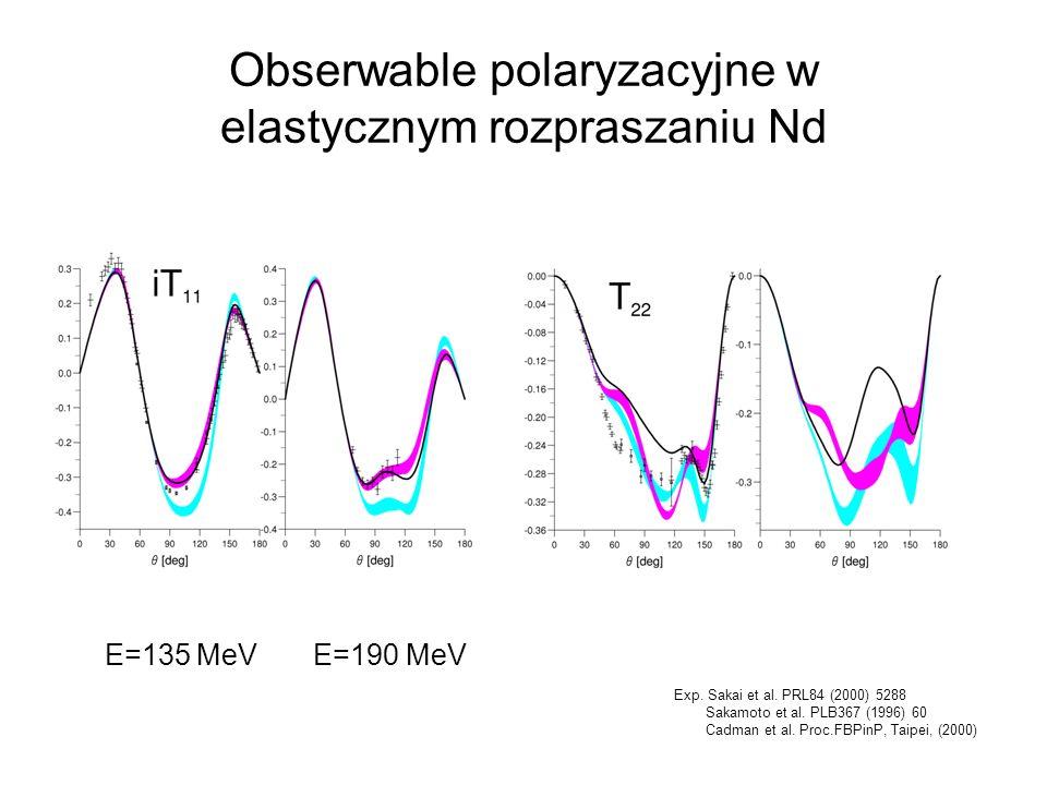 Obserwable polaryzacyjne w elastycznym rozpraszaniu Nd